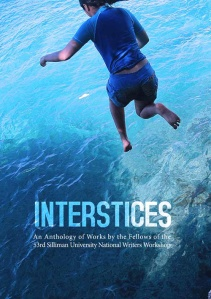 Interstices Cover